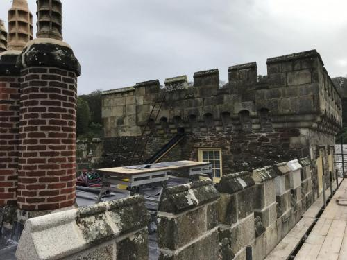 Caerhays Castle Roof